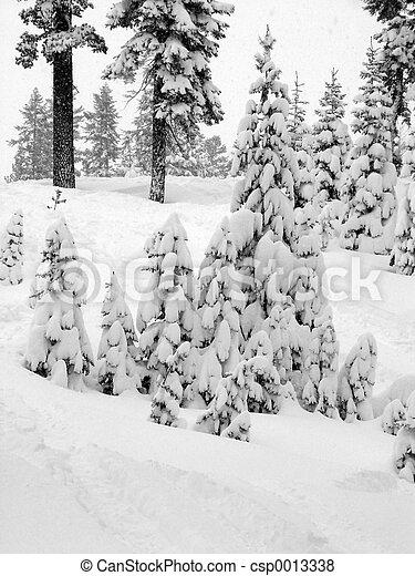 First snow - csp0013338
