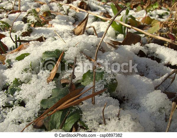 First snow - csp0897382