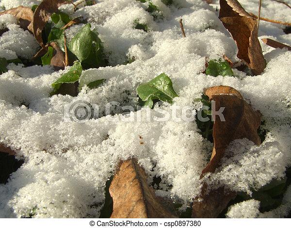 First snow - csp0897380