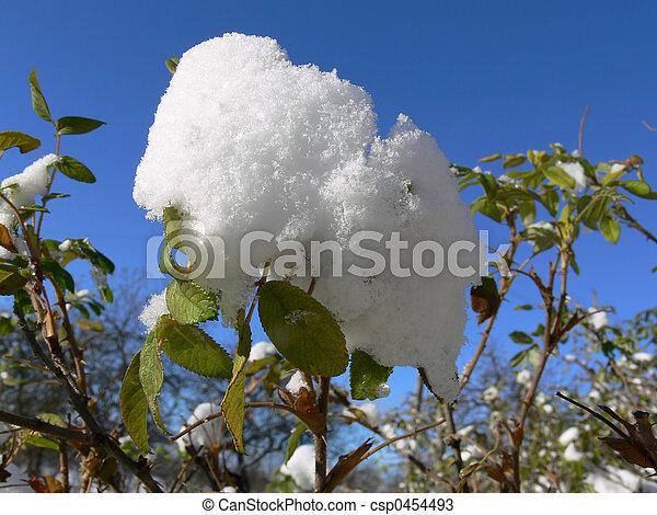 First snow - csp0454493