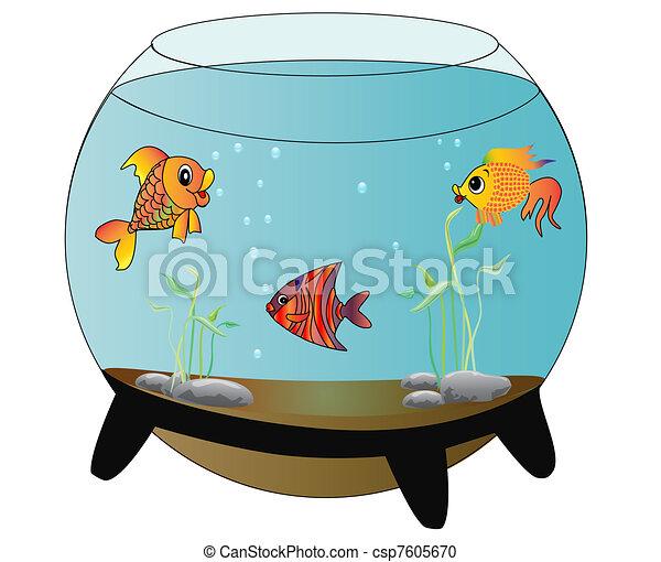 fische, aquarium, fröhlich, isoliert - csp7605670