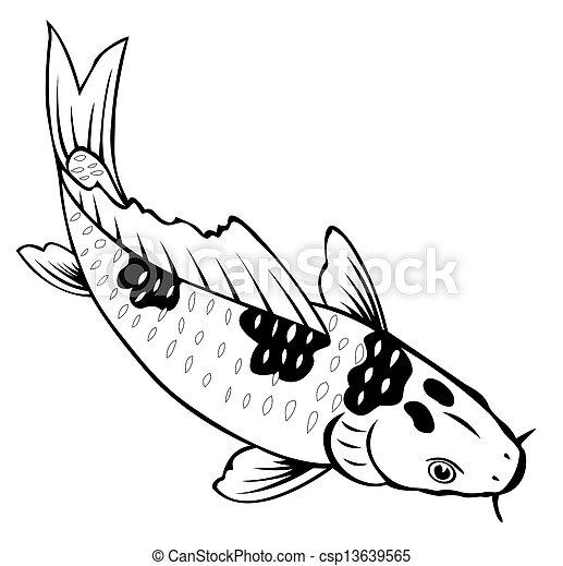 Fische, karpfen, färbung, weißer hintergrund. Färbung,... Stockbild ...
