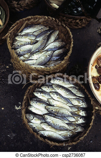 Fish at Cambodian market- Phnom Penh, Cambodia - csp2736087