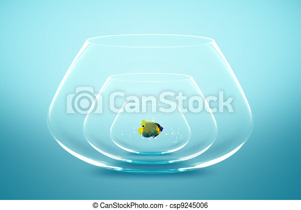 Feb 26,  · Goldfish can live for many years if properly cared for, a bowl is not large enough. My goldfish lived 10 years in a 27 gallon tank but may have lived longer in a pond. 1 liter won't be enough - goldfish can grow to 10 inches long or even larger than rburbeltoddrick.gas: