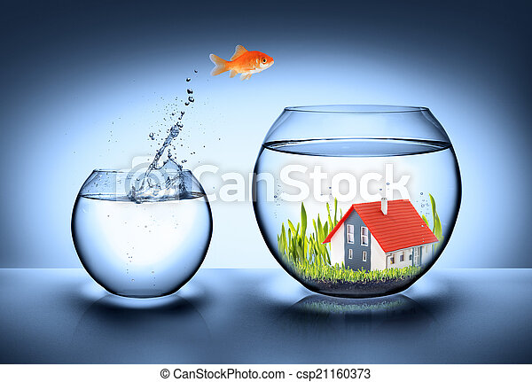 fish find house - real estate - csp21160373