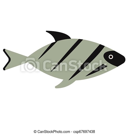 fish flat illustration on white - csp67697438
