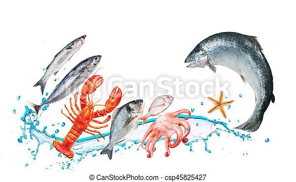 Fish jump with watersplash - csp45825427