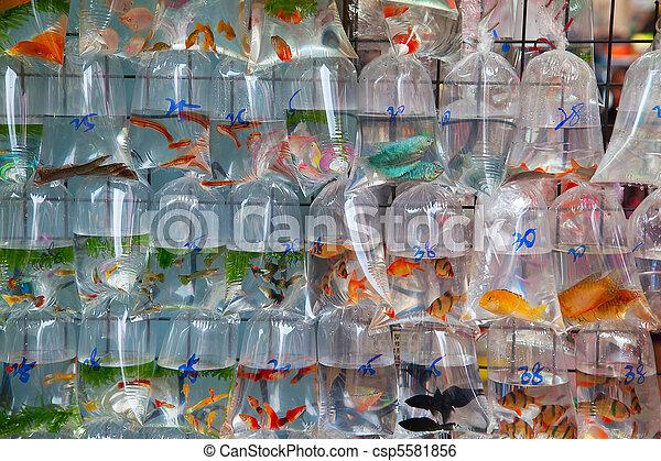 """Fish market""  - csp5581856"