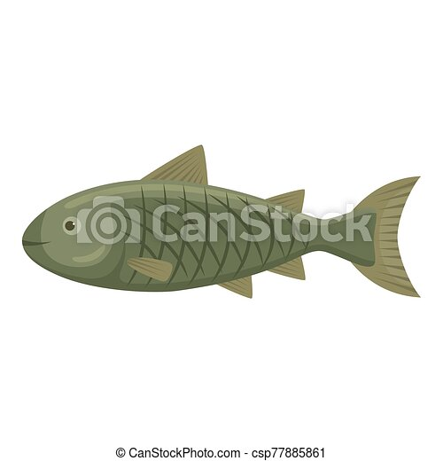 Fish on a white background - csp77885861