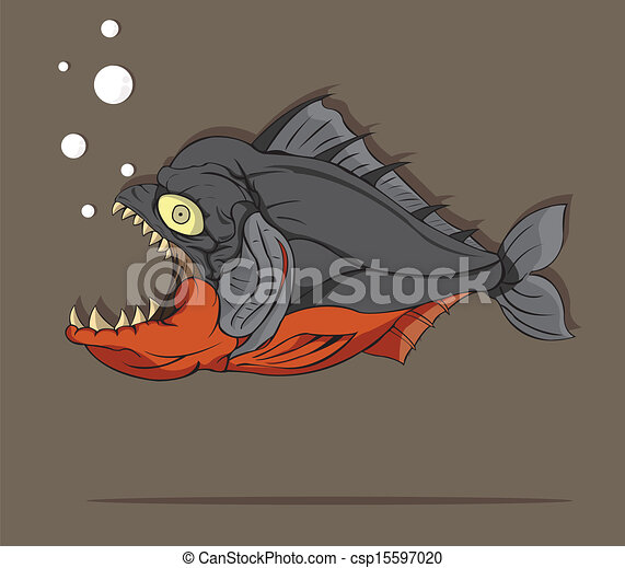 fish, piranha - csp15597020