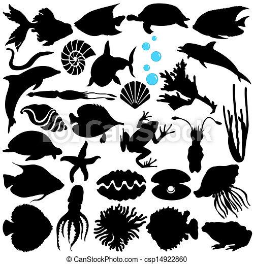 Fish, Sealife, Marine life, seafood - csp14922860