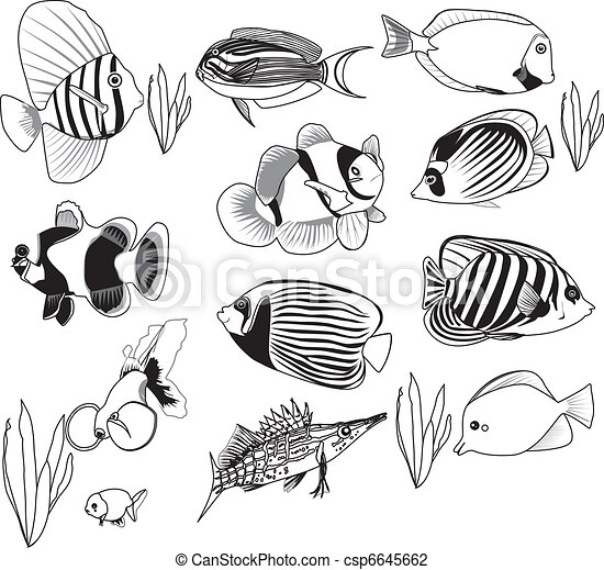 fish set fish set eps