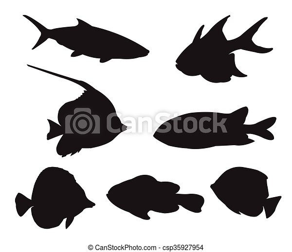 Fish Set Silhouettes on the white background - csp35927954