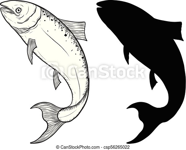 salmon fish art highly detailed in line art style fish vector by rh canstockphoto com fish vector art fish vector free download