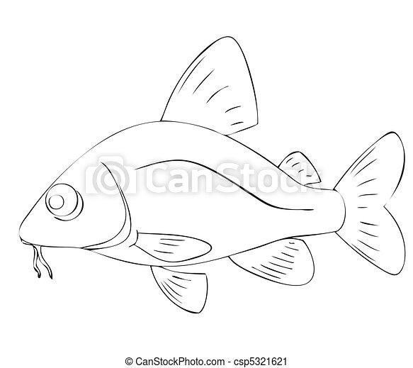 fish - csp5321621