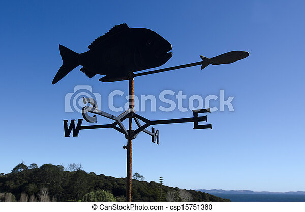 Fish weather vane - csp15751380