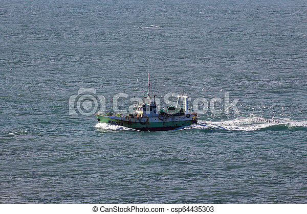 Fishing boat and seagulls in the Nazare waters, Portugal - csp64435303