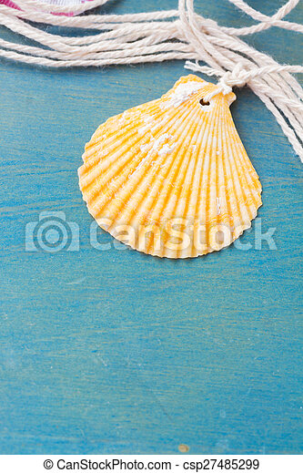 fishing net on wooden background - csp27485299