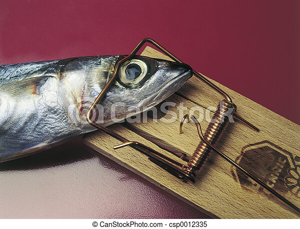 Fishing - csp0012335