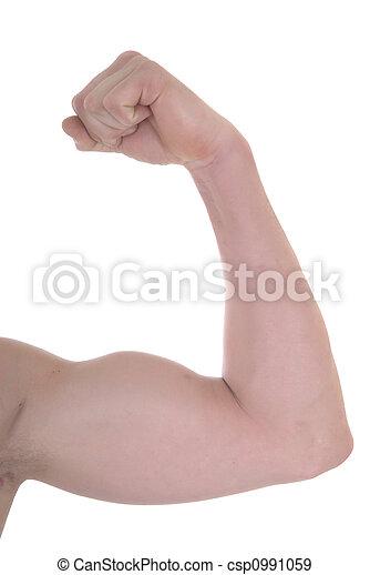 Fitness exercise, biceps - csp0991059
