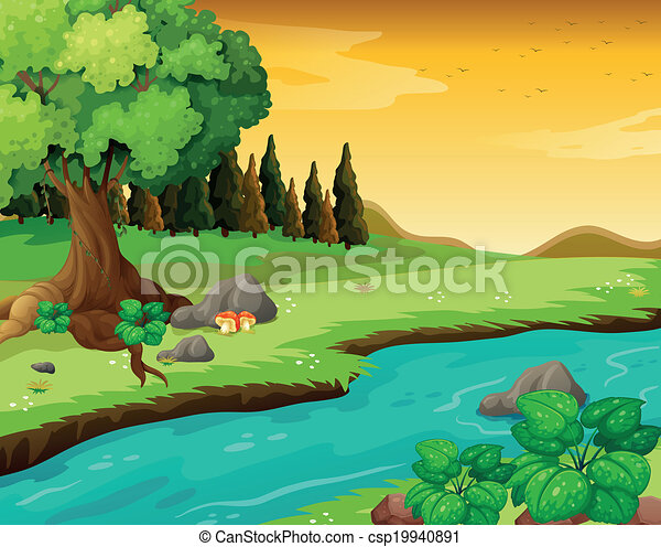fiume, foresta, fluente - csp19940891