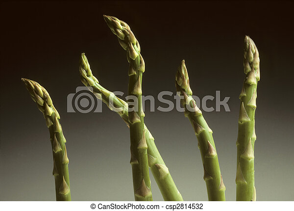 Five Asparagus spears against a gradated background - csp2814532