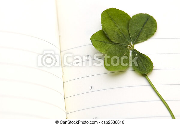 Five Leaf Clover And New Day