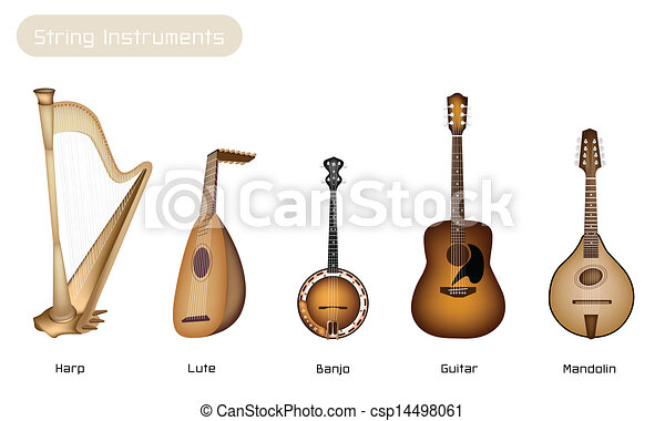 Five Musical Instrument Strings on White Background - csp14498061