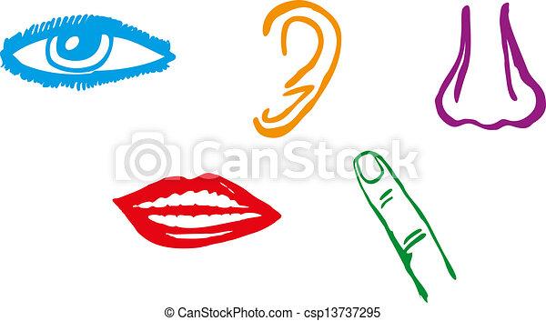 five senses icon set vector illustration eps vectors search clip rh canstockphoto com five senses clip art preschool five senses clipart png