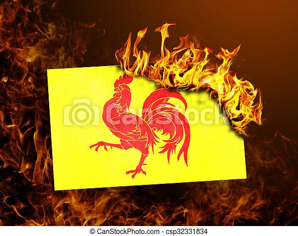 Flag burning - Wallonia - csp32331834