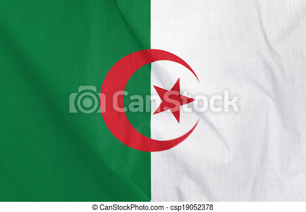 Flag of Algeria - csp19052378
