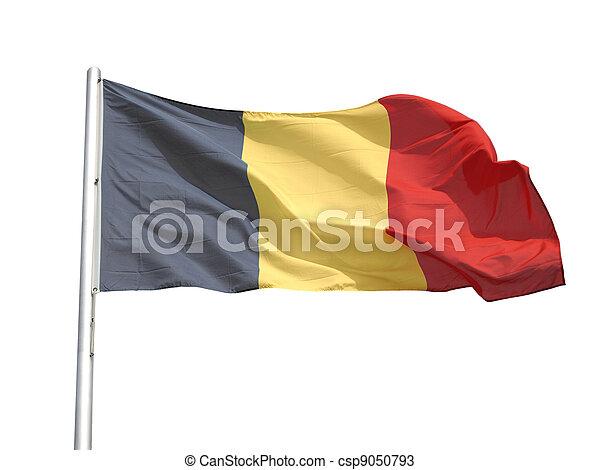 Flag of Belgium - csp9050793
