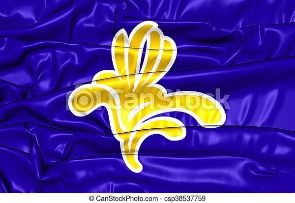 Flag of Brussels, Belgium. 3D Illustration. - csp38537759