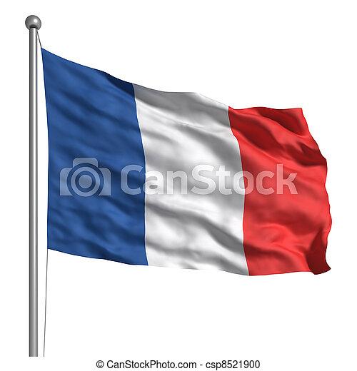 Flag of France - csp8521900