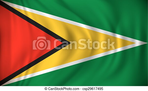 Flag of Guyana - csp29617495