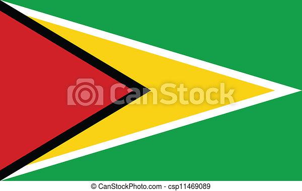 Flag of Guyana - csp11469089