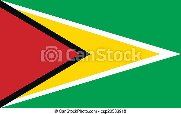 Flag of Guyana - csp20583918