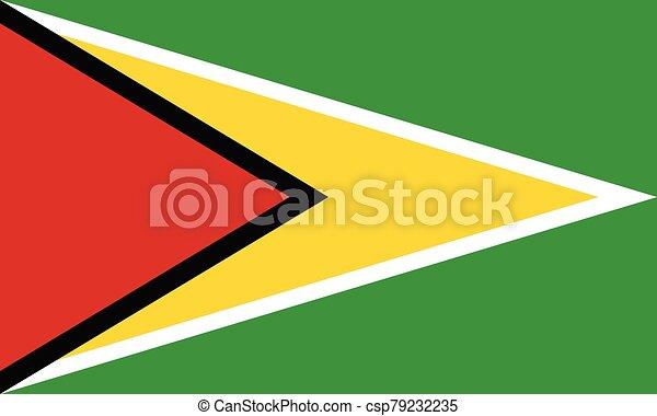 Flag of Guyana vector illustration - csp79232235