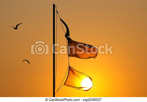 flags - csp2345037