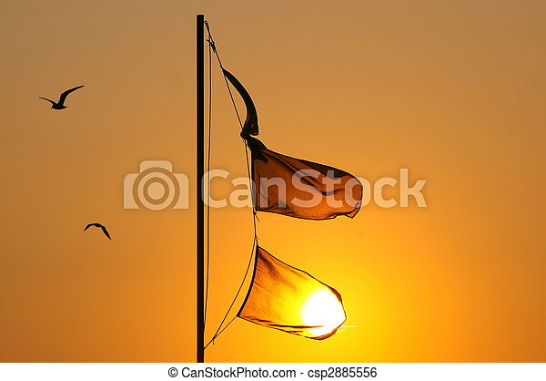 flags - csp2885556