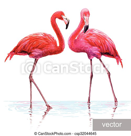 flamant rose color rose bleu color flamingo vecteur eps rechercher des clip art. Black Bedroom Furniture Sets. Home Design Ideas