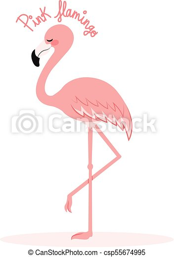 Rose Debout Flamant Rose Jambe Texte Illustration Une Mignon