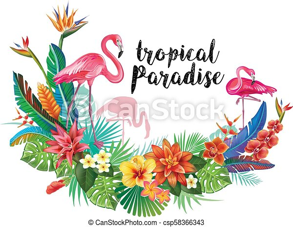 Flamingoes with tropical flowers - csp58366343