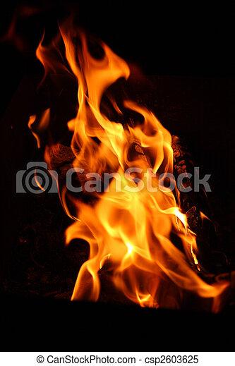 flamme, feu - csp2603625