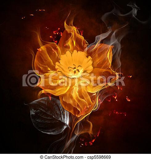 flamy, jelkép - csp5598669