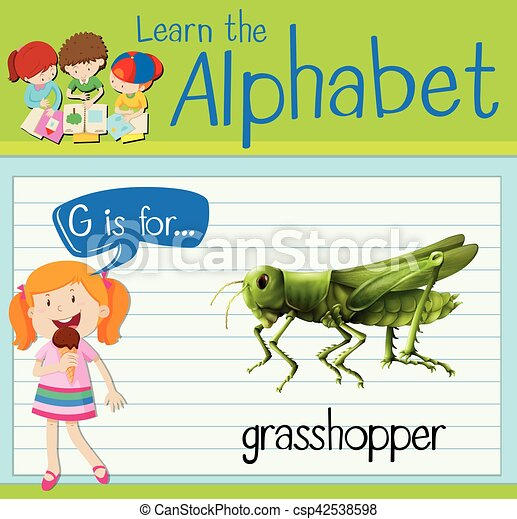 Flashcard letter G is for grasshopper - csp42538598