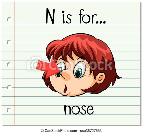 flashcard, naso, lettera n - csp36727553