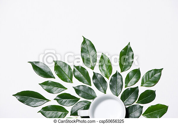 Flat lay of green leaves pattern with cup of milk on white background - csp50656325
