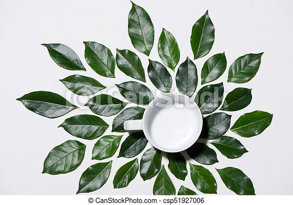 Flat lay of green leaves pattern with cup of milk on white background - csp51927006