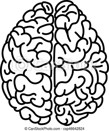 flat style human brain top view doodle illustration vector